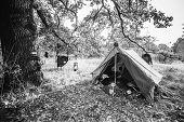 World War Ii German Wehrmacht Infantry Tent In Forest Camp. Wwii Ww2 German Ammunition. Photo In Bla poster