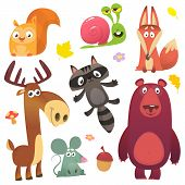Cartoon Forest Animal Characters. Wild Cartoon Cute Animals Set. Big Set Of Cartoon Forest Animals F poster