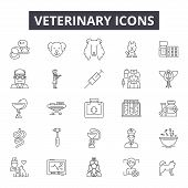 Veterinary Line Icons, Signs Set, Vector. Veterinary Outline Concept, Illustration: Veterinary, Anim poster