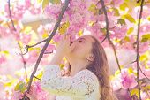 Girl On Smiling Face Standing Near Sakura Flowers, Defocused. Perfume And Fragrance Concept. Cute Ch poster