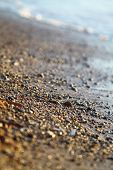 Wet Sea Sand On Beach Against Background Beautiful Golden Sunset. Close Up Sea Sand On Shore Ocean D poster