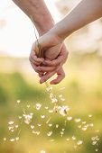 Young Loving Couple Holding Hands Each Other With Bouquet Of Yellow Dandelions In Summer Park, View  poster