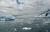 Icebergs, Brash Ice, In Open Sea