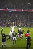 TWICKENHAM LONDON - NOVEMBER 23: Adriaan Strauss takes throw in at England vs South Africa, England