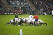 TWICKENHAM LONDON - NOVEMBER 23: English and South African Packs Scrum at England vs South Africa, E