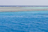 Cristal Clear Waters Of The Red Sea