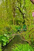 Japanese Bridge and Water Garden