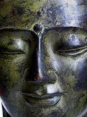 A Serene Buddha's Face