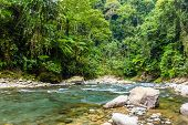 stock photo of rainforest  - A clear and fast flowing river running through tropical rainforest - JPG