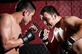 MMA fighters during a match