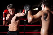 stock photo of boxers  - Latin boxer and his coach doing some sparring in the ring - JPG