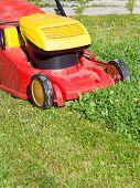 Lawn Mower Mows Green Lawn