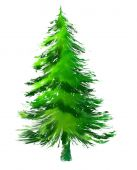 Christmas Tree or Pine Tree on White Background