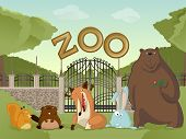 Zoo With Forest Animals