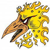 An image of a phoenix bird.
