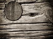 Wooden Nail