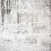stock photo of stippling  - Dirty white wall texture - JPG