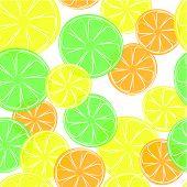 Citrus doodle style background