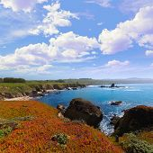California Pigeon point beach in Cabrillo Hwy coastal highway State Route 1