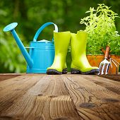stock photo of housekeeping  - Outdoor gardening tools  on old wood table - JPG