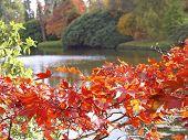 Autumn 1 poster
