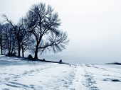 Cold_