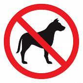 picture of no entry  - No dog sign isolated on a white background - JPG
