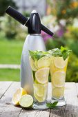 Homemade lemonade with fresh citruses and siphon on garden table