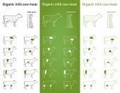 Organic  Milk Cow Meat Parts Icons For Packaging And Info-graphic 2
