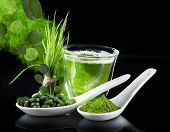 pic of chlorella  - Young barley and chlorella spirulina - JPG