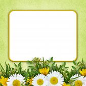 Wild Flowers Arrangement And Frame