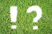 Green Grass Ecological Question And Exclamation Mark Icon
