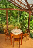 Table And Chairs For Four In A Rain Forest Setting