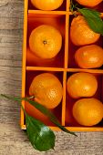 pic of clementine-orange  - Tangerines or Mandarin orange in the orange box - JPG
