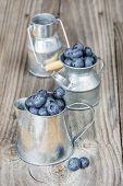 Blueberries In A Metal Tableware