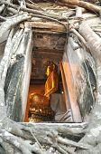 Buda Vent marco pared raíz