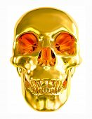 Gold skull isolated on white background.