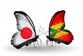 Two Butterflies With Flags On Wings As Symbol Of Relations Japan And Grenada