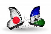 Two Butterflies With Flags On Wings As Symbol Of Relations Japan And  Lesotho