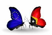 Two Butterflies With Flags On Wings As Symbol Of Relations Eu And East Timor