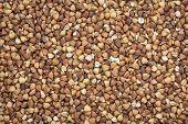 background and texture of roasted buckwheat kasha - gluten free grain