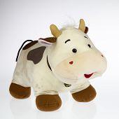 stock photo of stuffed animals  - a stuffed cow plush on white background - JPG