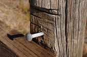 Fence and spike