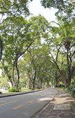 Lumpini Public Park