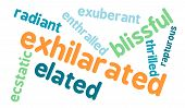 stock photo of rapture  - Exhilarated word cloud on a white background - JPG