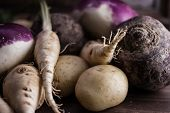 picture of root-crops  - root vegetables from the garden on a brown background - JPG