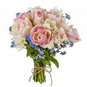 image of forget me not  - Bouquet of tulips and forget - JPG