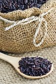 foto of jasmine  - Raw purple Riceberry rice it is a crossbred between Thai Hom Nil (black jasmine rice) and white Jasmine riceRice for health. ** Note: Soft Focus at 100%, best at smaller sizes - JPG