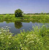 River Avon Stratford Upon Avon
