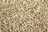stock photo of buckwheat  - background of buckwheat   - JPG